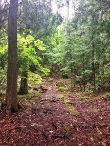 Flowerpot Island, Trail, Hiking